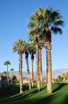 Palm Springs Wind Installers